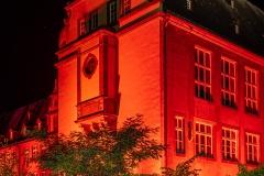 Rhein-ohne-Flammen_05